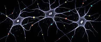 Analyzing software code using artificial neural networks