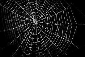"Watch ""Full Stack Web Development Using Django | Python Django Tutorial | Python Django Training | Edureka"" on YouTube"